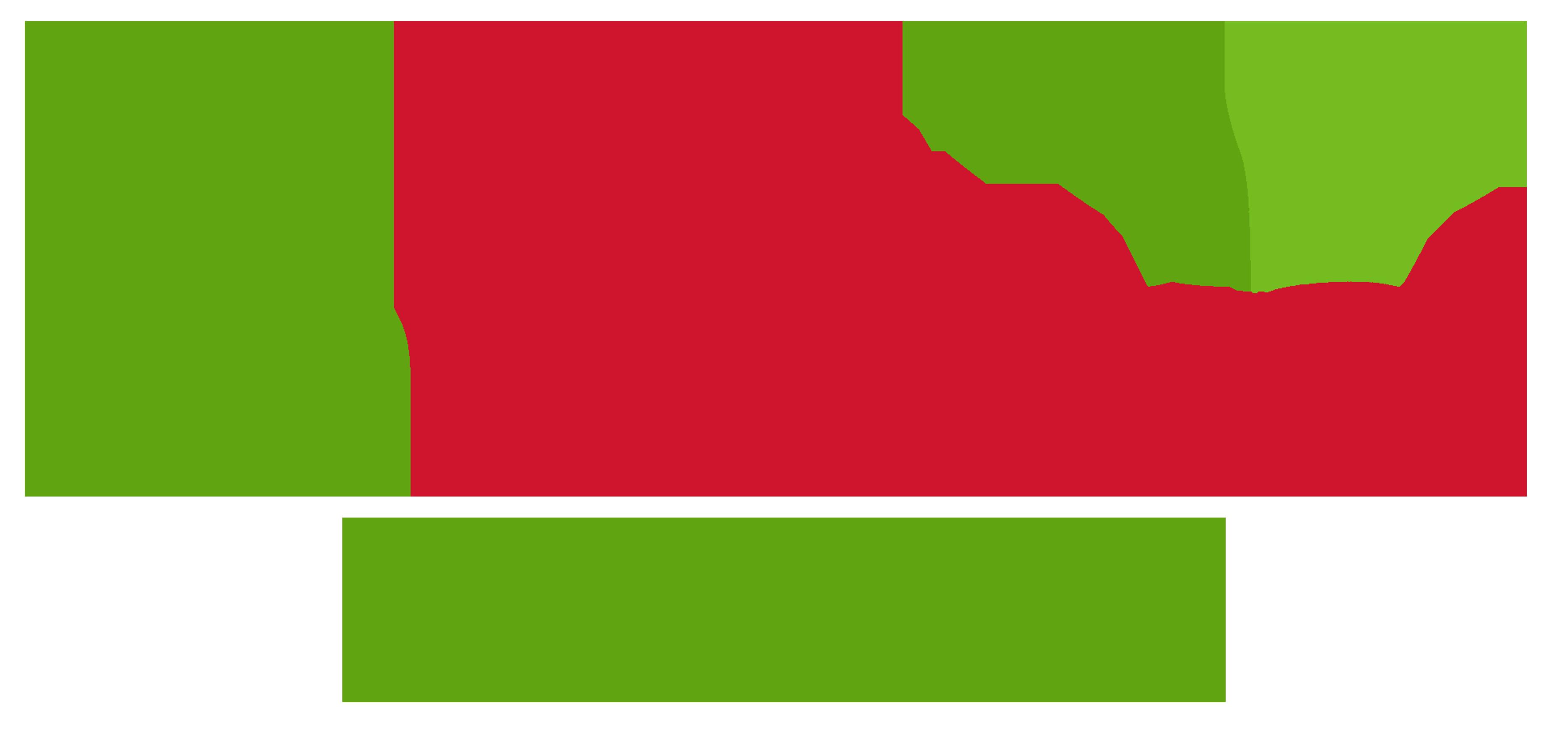 Enmarket Arena