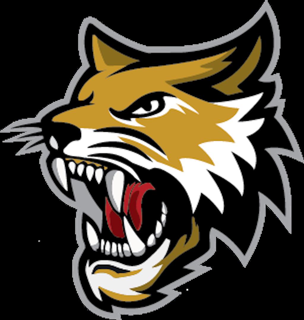 Vermillion County Bobcats