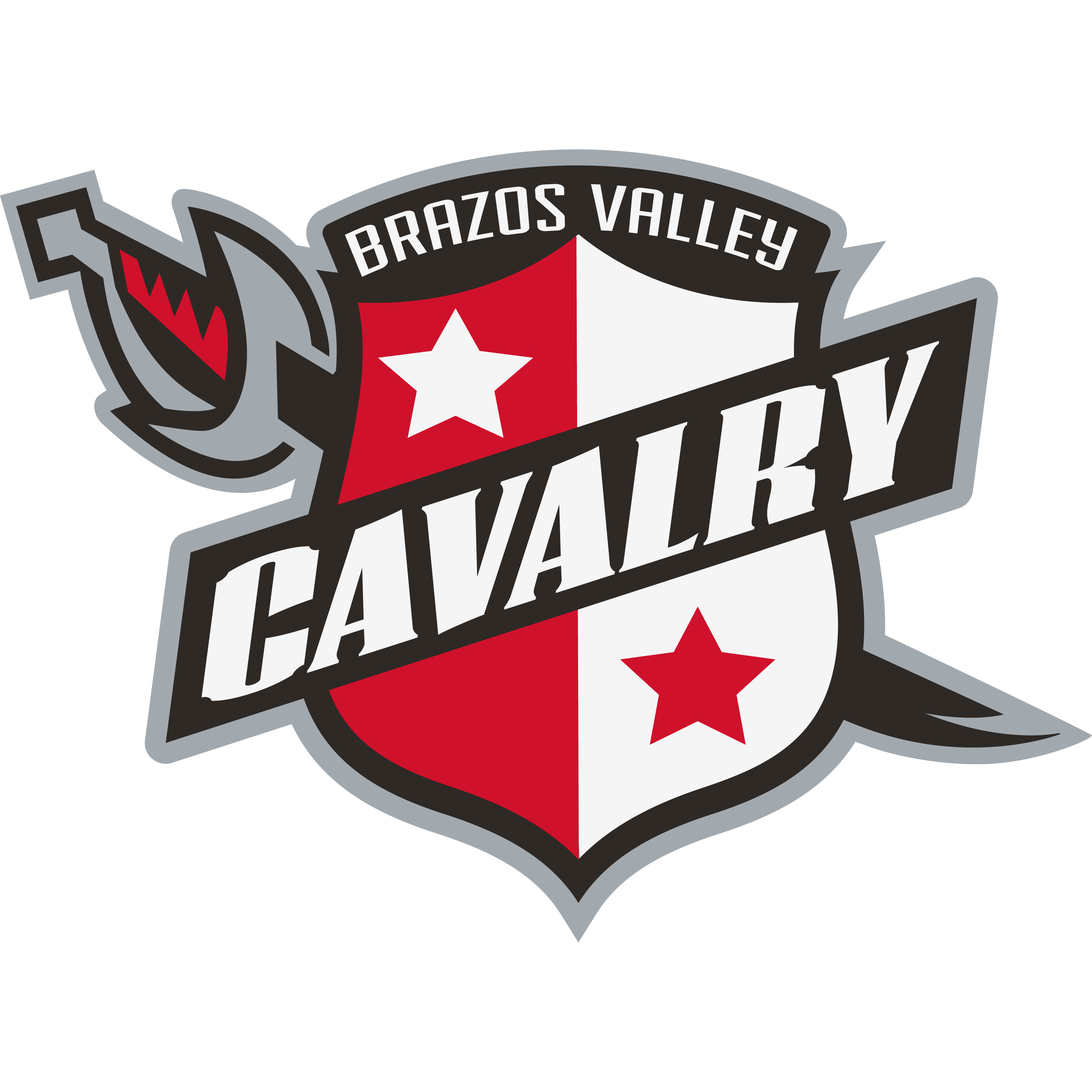 Brazos Valley Calvary